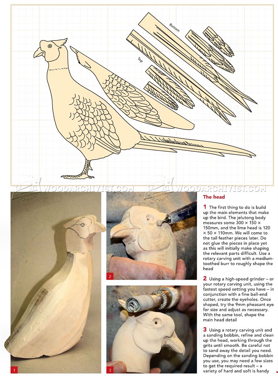 How to clean pheasant feathers -  Carving Cock Pheasant Wood Carving Patterns