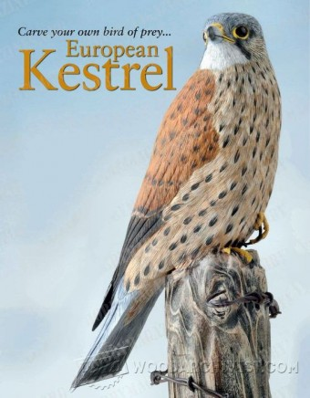 230 Bird Carving European Kestrel - Wood Carving Patterns