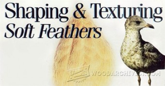275-Carving Tips & Techniques- Shaping&Texturing Soft Feathers