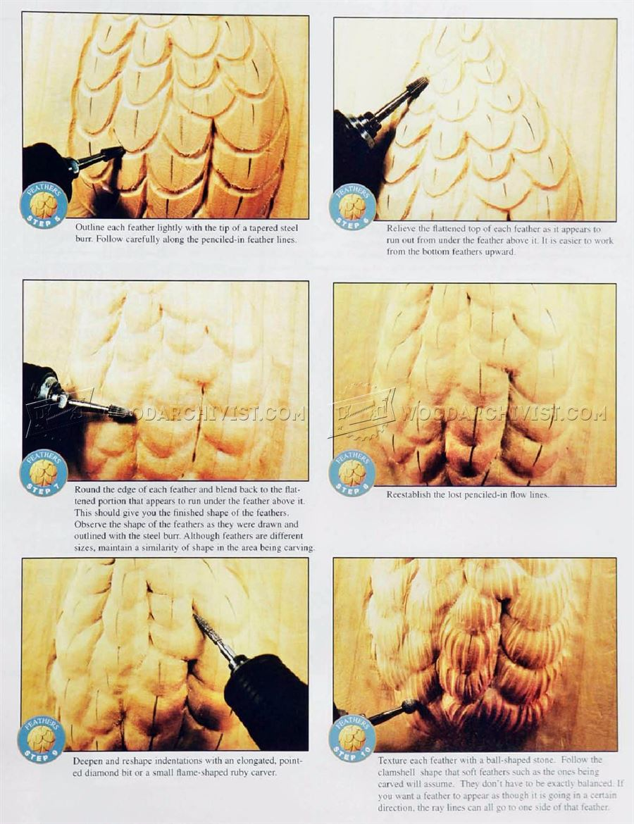 Carving Feathers - Wood Carving Techniques