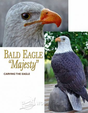 912-Bald Eagle Carving - Wood Carving Patterns