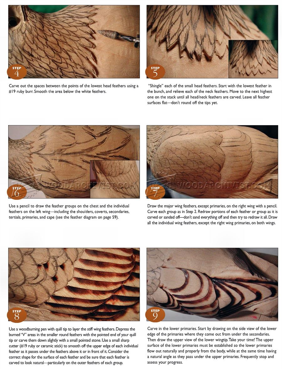 Bald Eagle Carving - Wood Carving Patterns • WoodArchivist