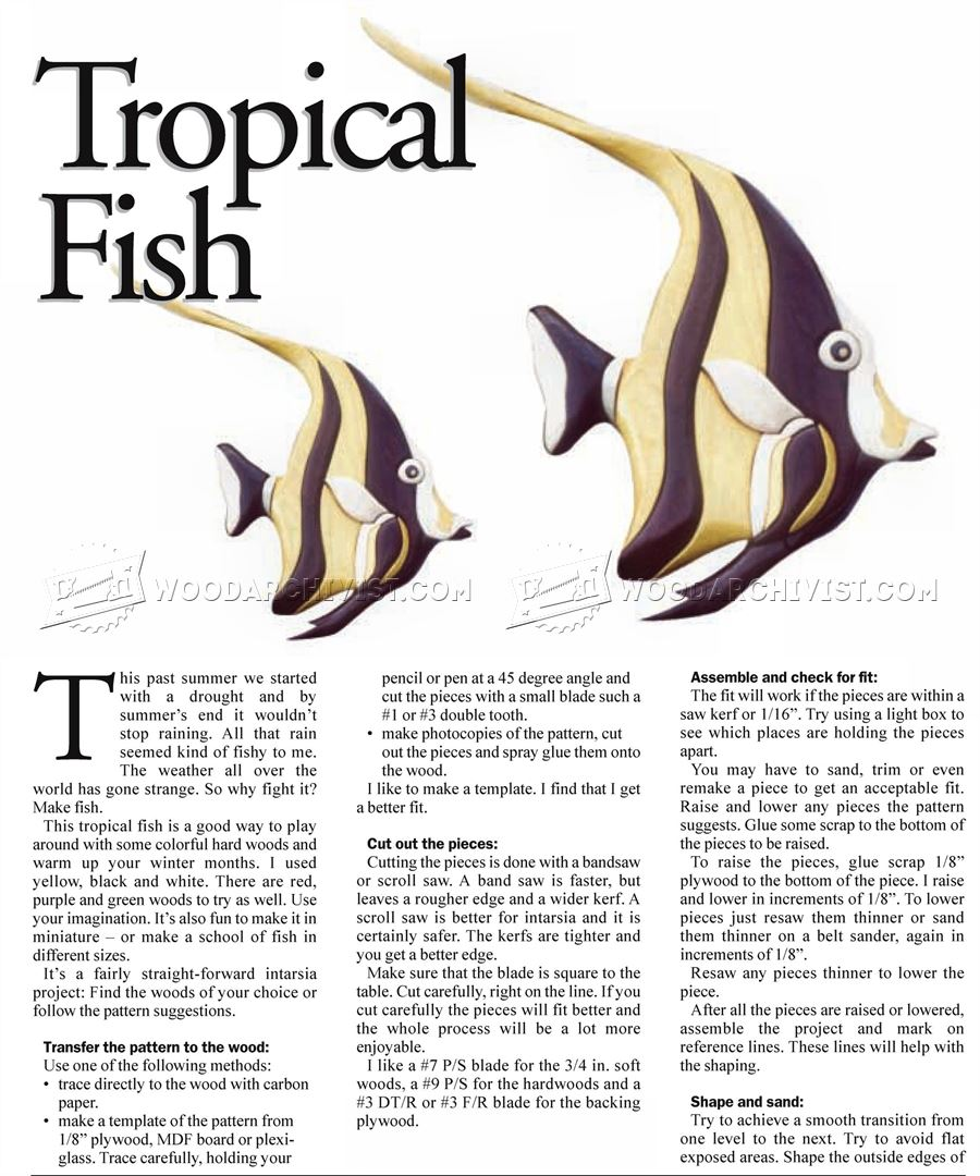 Tropical Fish - Intarsia Projects