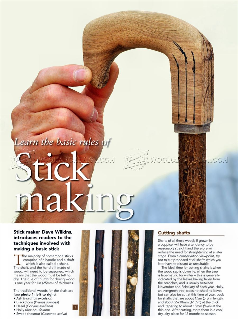 Making Walking Sticks