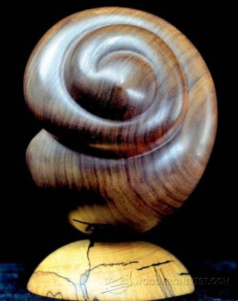 1981-Seashell Carving - Wood Carving Patterns