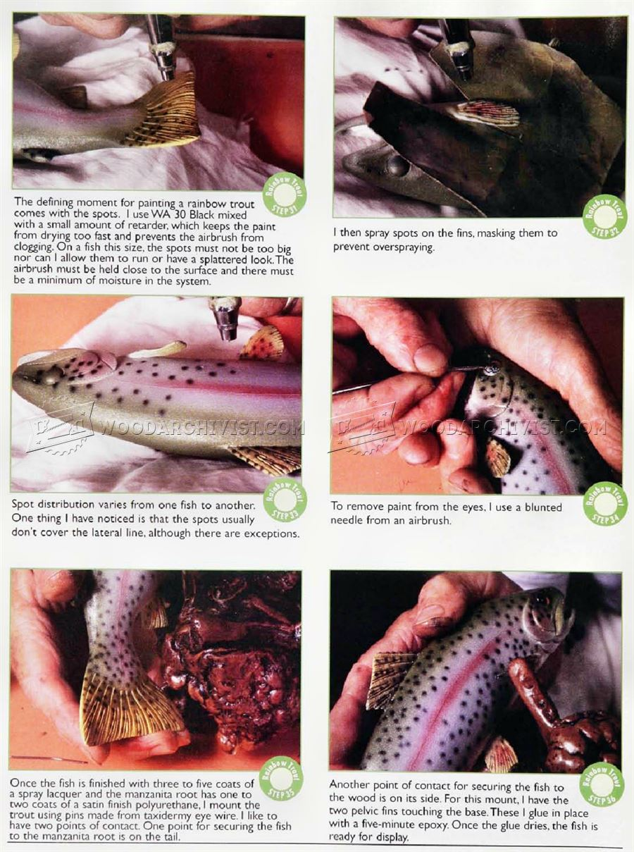 Carving and Painting Rainbow Trout