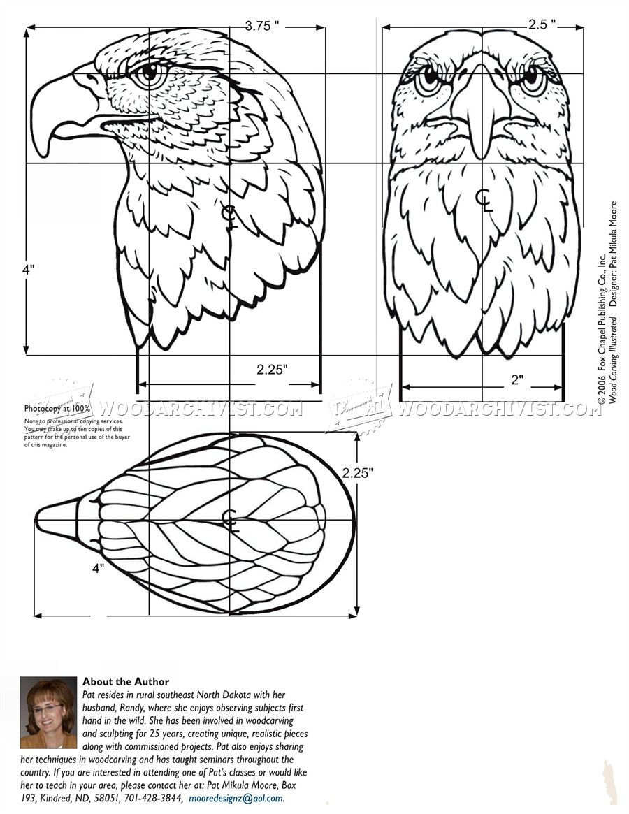 Eagle head pattern for carving bust