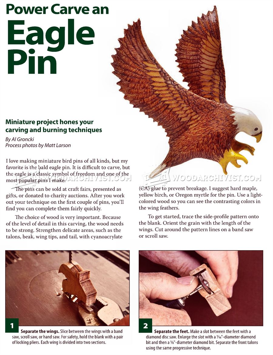 Power Carving - Eagle Pin