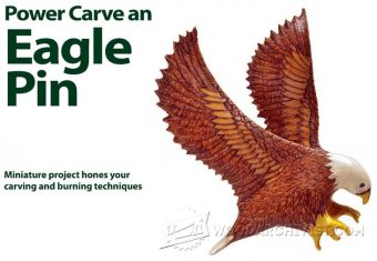 2162-Power Carving - Eagle Pin