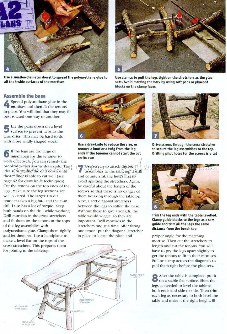 Build Tree Branch Table