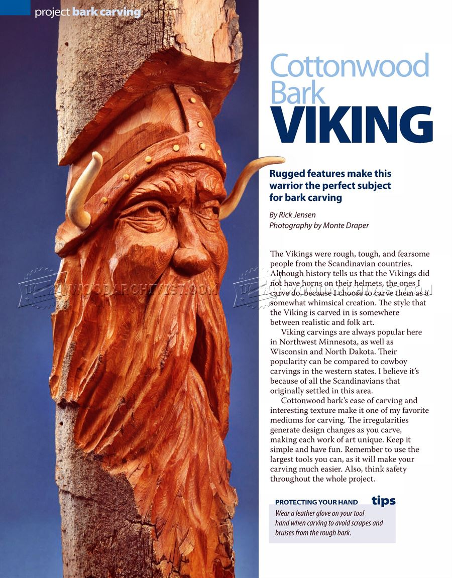 Viking Bark Carving Woodarchivist