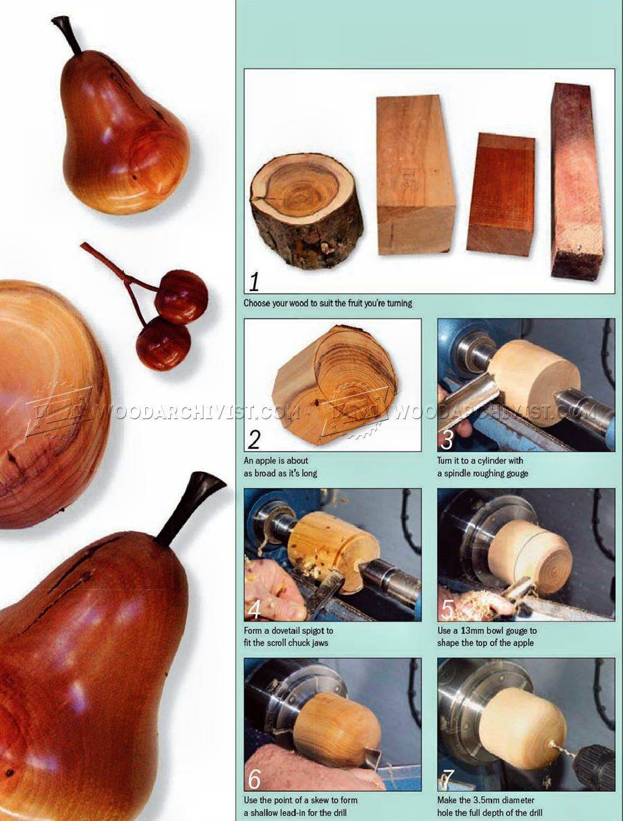 #2913 Wood Turning Fruit