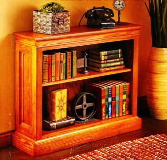 2947-Shortcut Bookshelf Plans