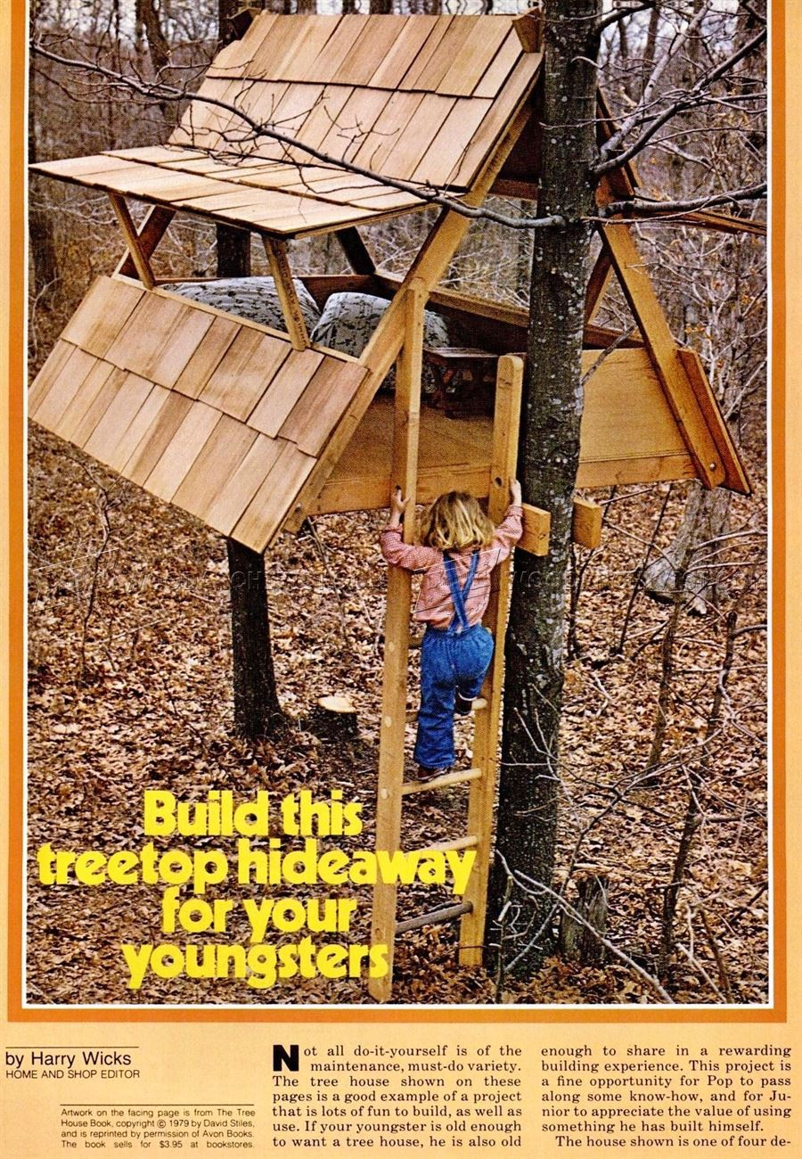 Build Treehouse