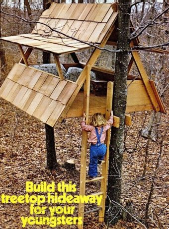 3319-Build Treehouse