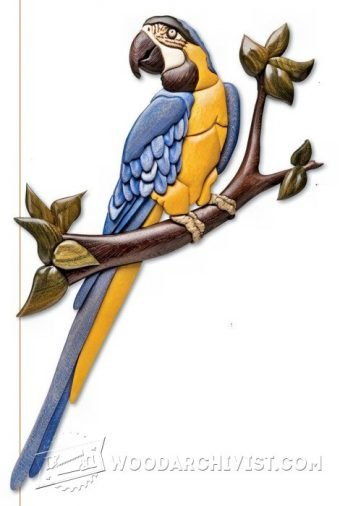 3469-Macaw - Intarsia Patterns