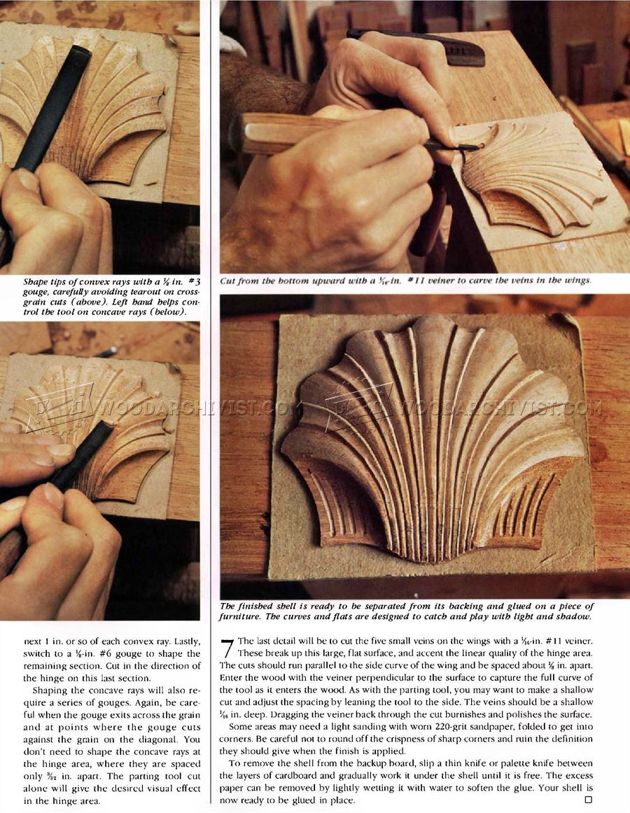 Carving Scallop Shell