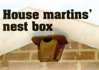 3657-House Martins Nest Box