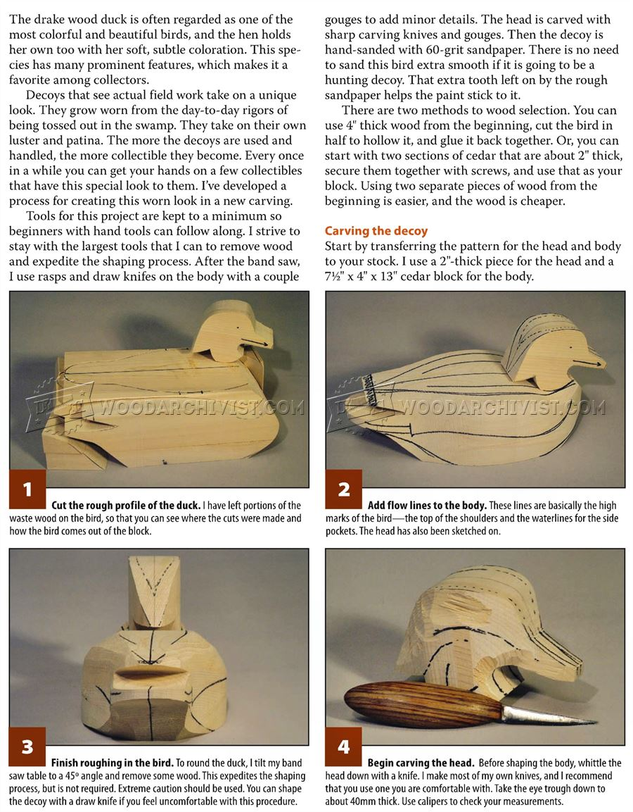 Duck Carving