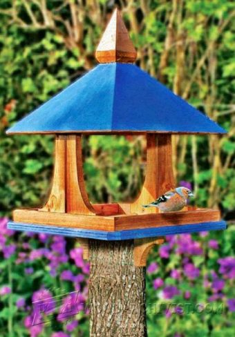 3855-DIY Bird Feeder