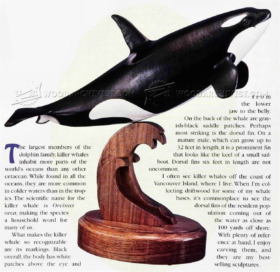 Carving and Painting Killer Whale