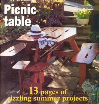 3958-Build a Picnic Table